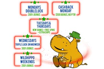 Lucky Hippo Casino Promos