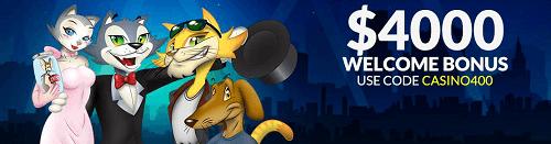 Cool Cat Casino Offer